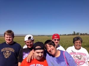 Dixon Corn Maze (2)